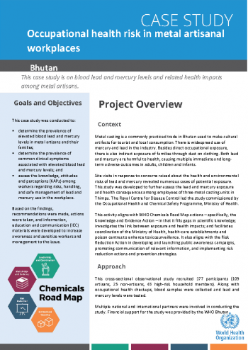 Case study: occupational health risk in metal artisanal workplaces in Bhutan