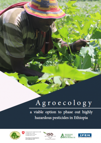 Agroecology – a viable option to phase out highly hazardous pesticides in Ethiopia