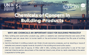 Chemicals of Concern in the Building and Construction Sector - Summary