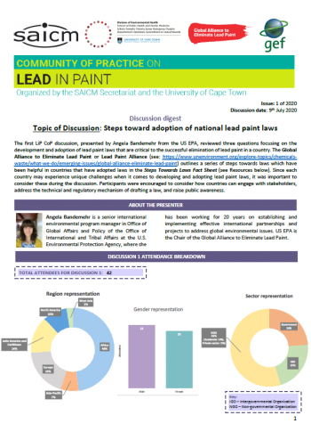 Steps toward adoption of national lead paint laws