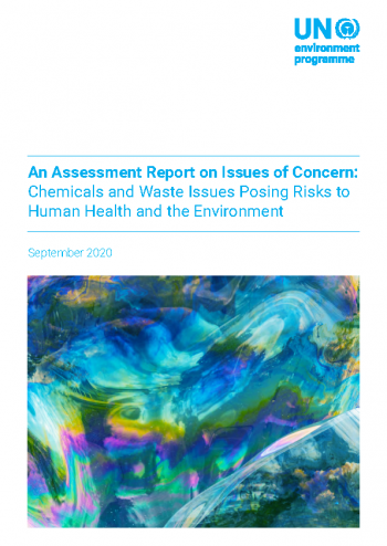 An Assessment Report on Issues of Concern: Chemicals and Waste Issues Posing Risks to Human Health and the Environment