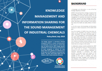 Knowledge Management and Information Sharing for the Sound Management of Industrial Chemicals
