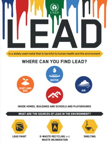 Lead infographics