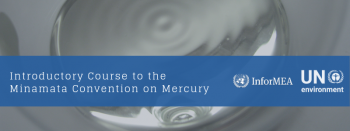 Updated course on the Minamata Convention on Mercury