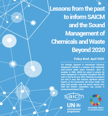 Lessons from the past to inform SAICM and the Sound Management of Chemicals and Waste Beyond 2020