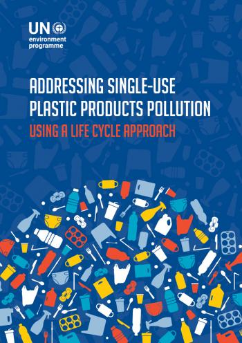 Single-Use Plastic Products (SUPP) and their alternatives: Recommendations from Life Cycle Assessments