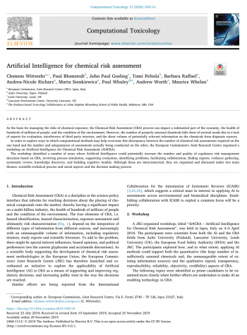 Artificial Intelligence for chemical risk assessment
