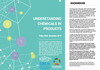 Understanding chemicals in products: SAICM Policy Brief