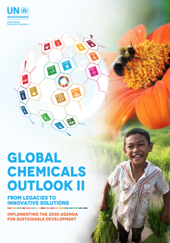 Global Chemicals Outlook II: From Legacies to Innovative Solutions