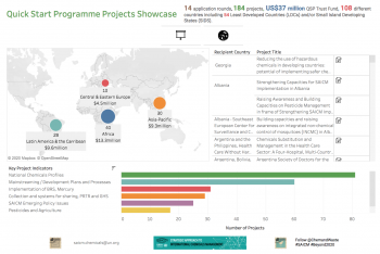 Interactive visualisation of the Quick Start Programme implementation
