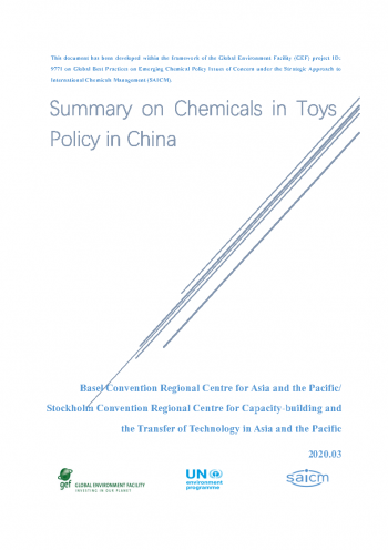 Summary on Chemicals in Toys Policy in China