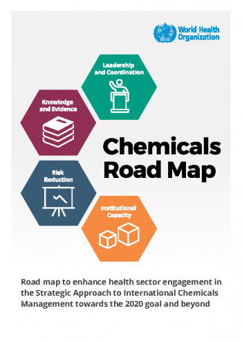 Case studies on the implementation of the WHO Chemicals Road Map