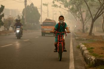Hazardous Substances Undermine Human Rights to Health, Life: OHCHR and UNEP