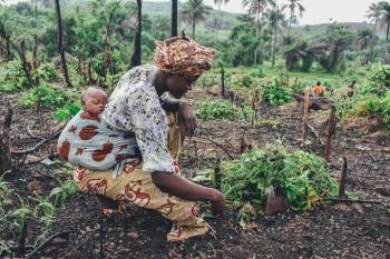 UNEP Report Identifies Top Actions to Minimize Adverse Impacts of Pesticides, Fertilizers